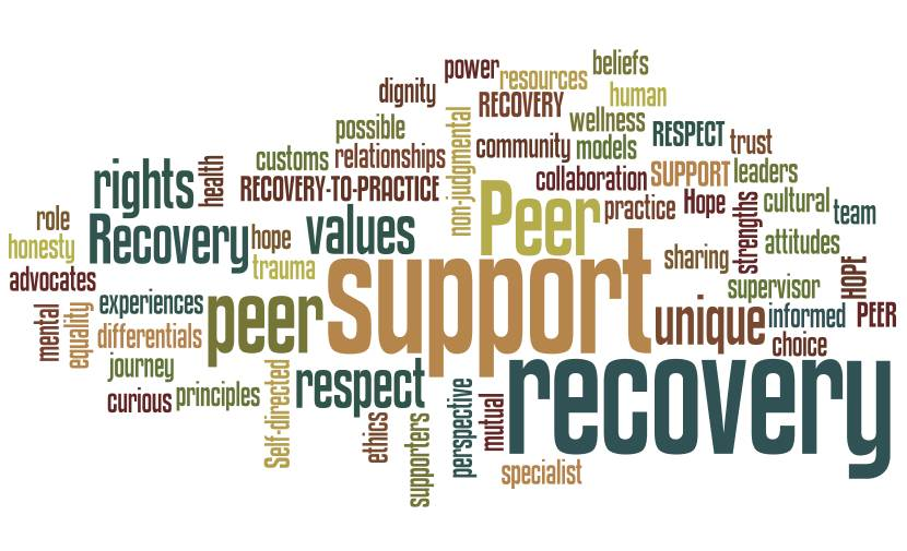 peer support in recovery | healing properties | florida halfway house